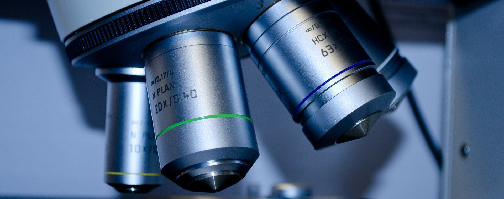 Histologie & Zytologie
